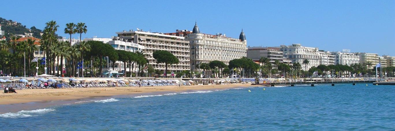 Cannes festa della mimosa