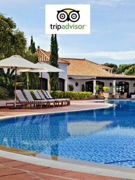 location-vacances-certificat excellence tripadvisor